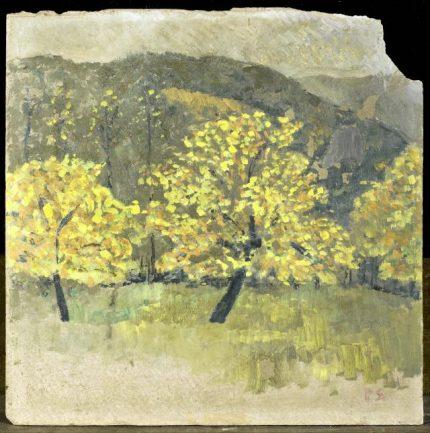 arbres-en-fleurs