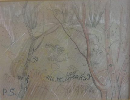 arbres-et-rocher