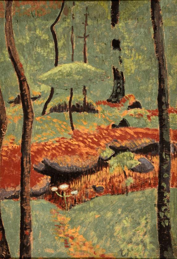 sous-bois-aux-arbres-japonisants